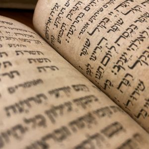 What Are The Jewish Holy Books?