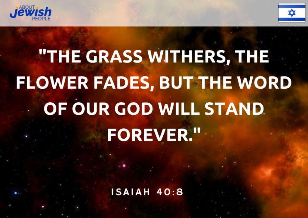 "Bible quote ""The grass withers, the flower fades, but the word of our God will stand forever."" Isaiah 40:8"