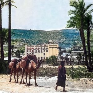 Old Color Photos Of Israel (Haifa) In The Beginning Of the 20th Century