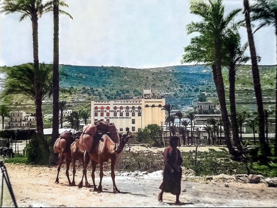 Israel Haifa Photo